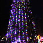 Idyllwild Christmas Tree – 6387
